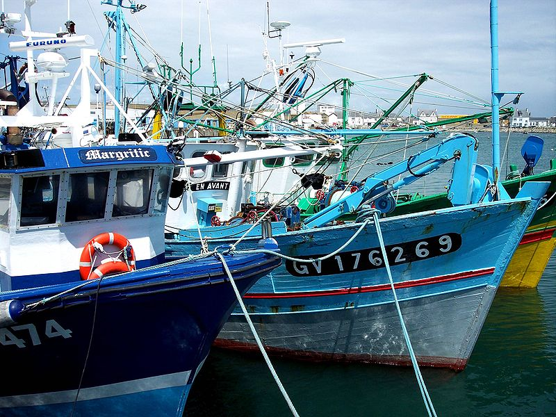 Chalutiers côtiers