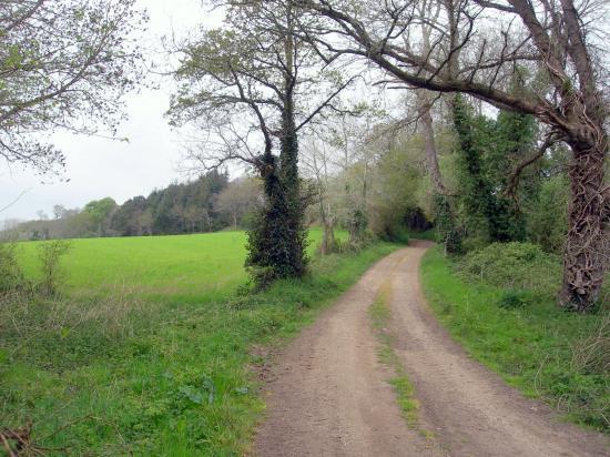 petit chemin pour la promenade